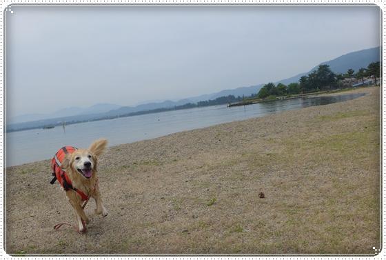 2015,5,23琵琶湖9