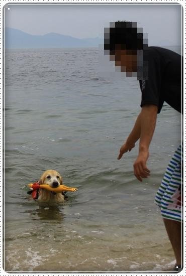 2015,6,3琵琶湖3