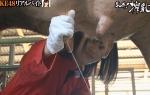 SKE48 東李苑 セクシー 搾乳女 地上波キャプチャー 牛の乳搾り 握り 高画質エロかわいい画像8961