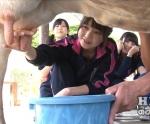 HKT48 駒田京伽 セクシー 牛の乳搾り 握り 地上波キャプチャー 高画質エロかわいい画像8991