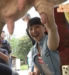ももクロ 百田夏菜子 セクシー 牛の乳搾り 握り ミルク 牧場体験ロケ 地上波キャプチャー 擬似 高画質エロかわいい画像9060