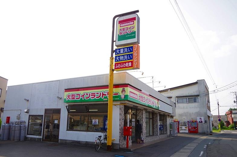 IMGP3058_C.jpg