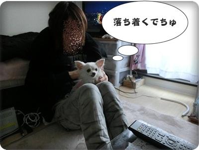 白音のんトライアル068