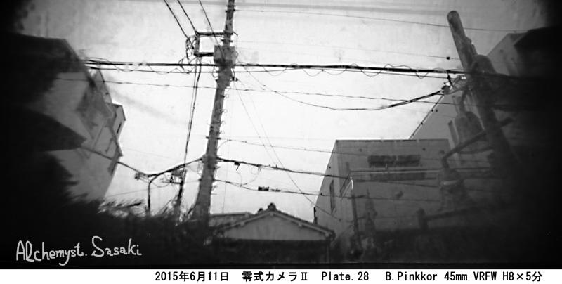2005年6月11日 Plate28 B-Pinkkor