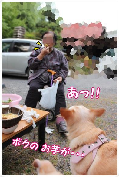 IMG_5490.jpg