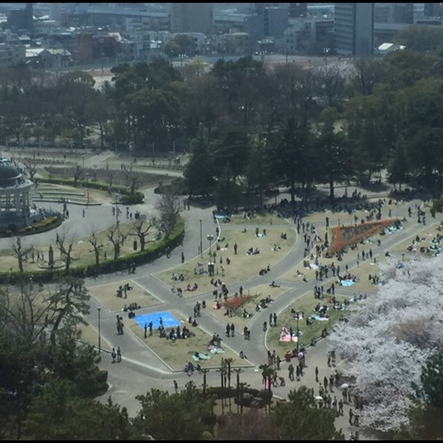 写真 2015-04-01 8 32 12