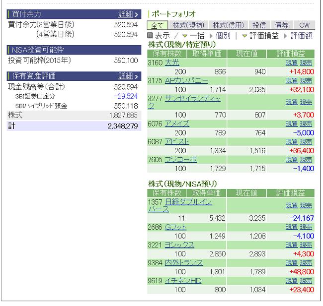 評価損益20150229