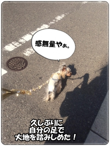 IMG_5741.jpg