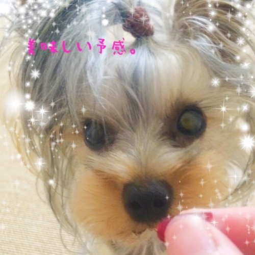 IMG_5778.jpg