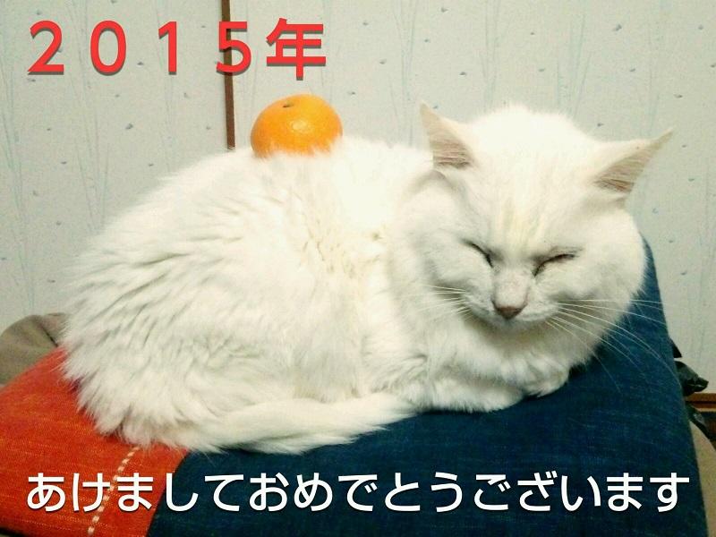 Fotor_142003192875768.jpg