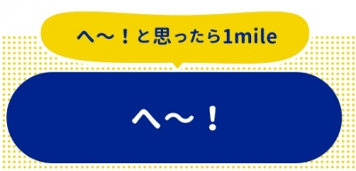 ネットマイル