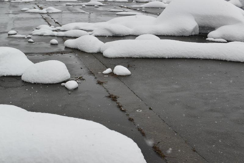 正月から雪-3