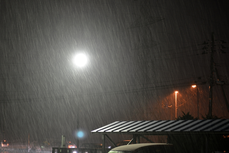 雪が降る-3