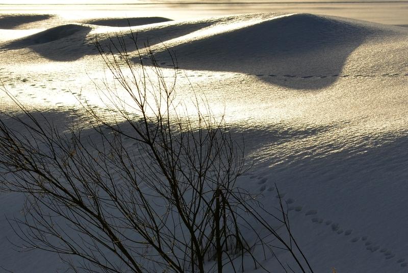 光る雪原-3