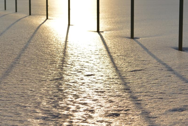 光る雪原 ポール-3