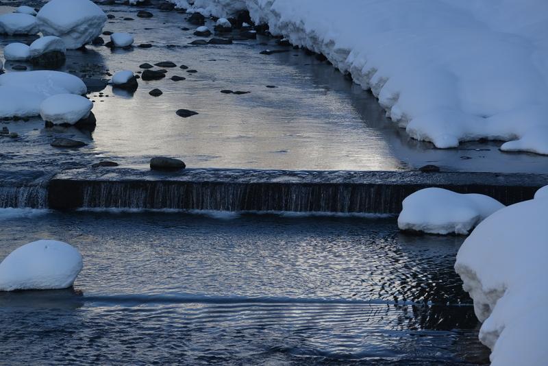 冬の水無川-1
