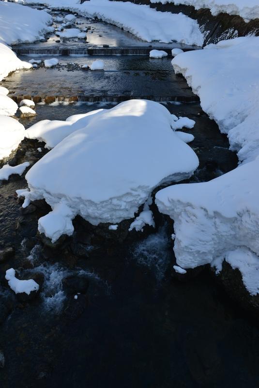 冬の水無川-3