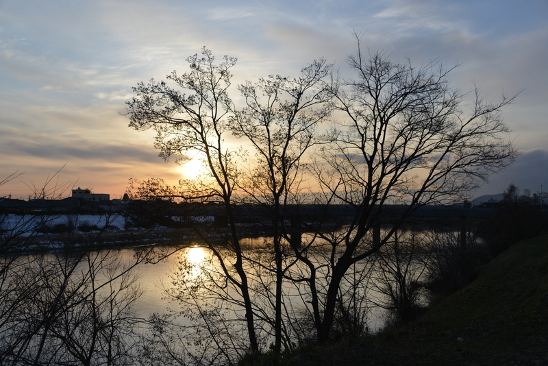 木と川と夕陽-1