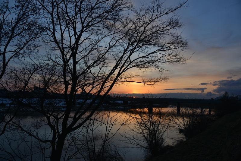 木と川と夕陽-2