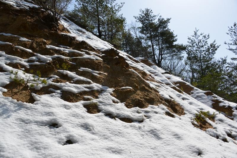 なごり雪-3