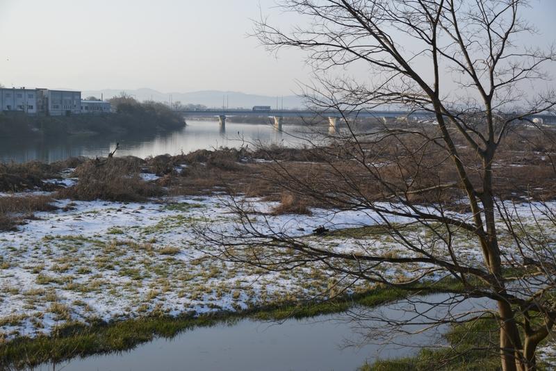 朝の河原-1