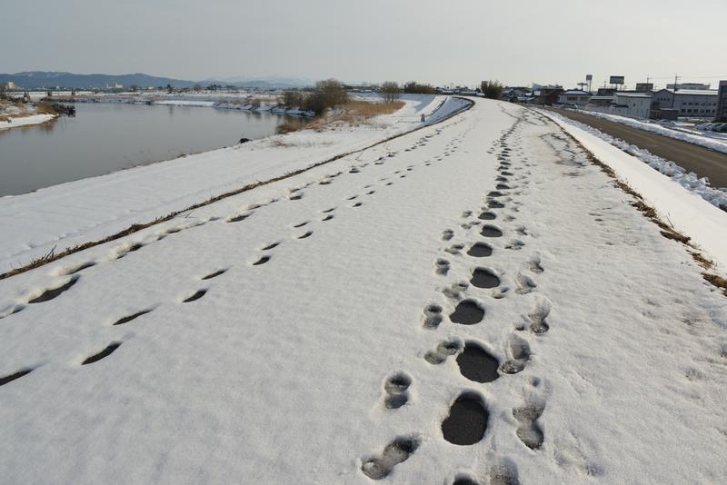 土手 雪-3