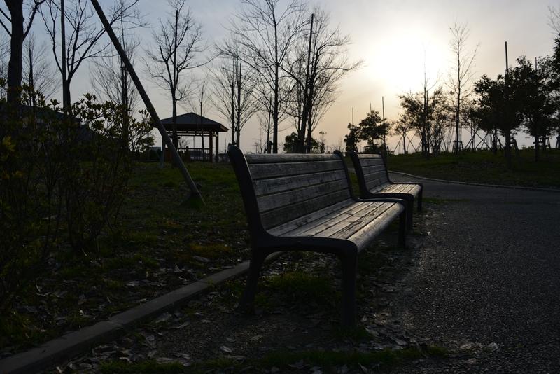 夕暮れ時の公園-1