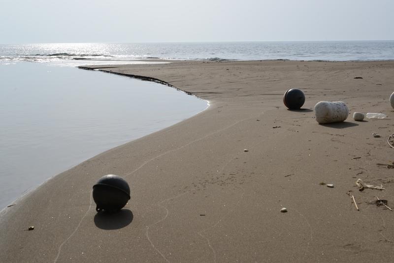春の浜辺-1
