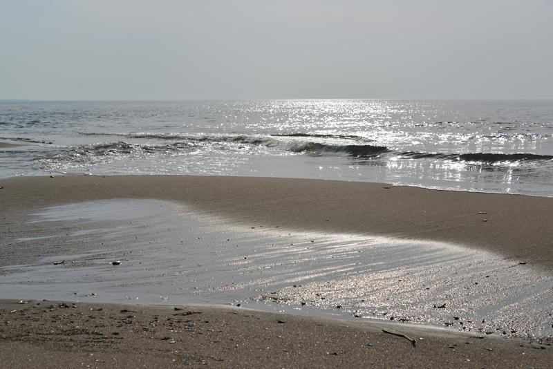 春の浜辺-3