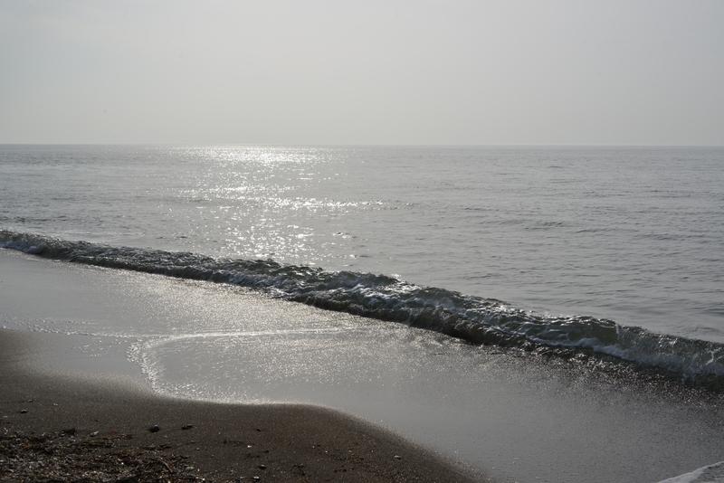 春の浜辺-4