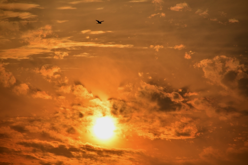 夕焼け 雲-5