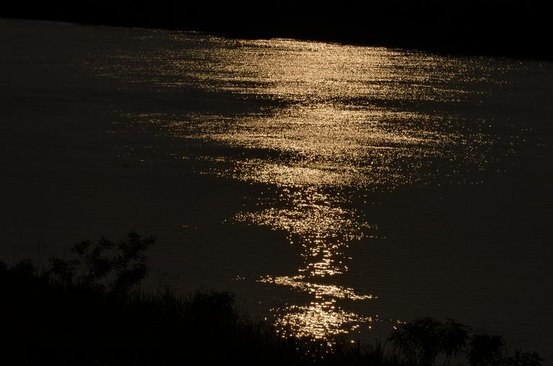 光る川-1