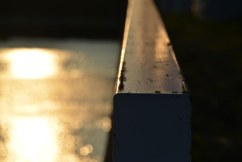 夕陽 堰にて-2