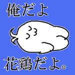 花鶏ちゃん
