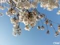 syun-blog-0084.jpg