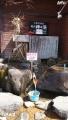 tubasa-blog-065-01.jpg
