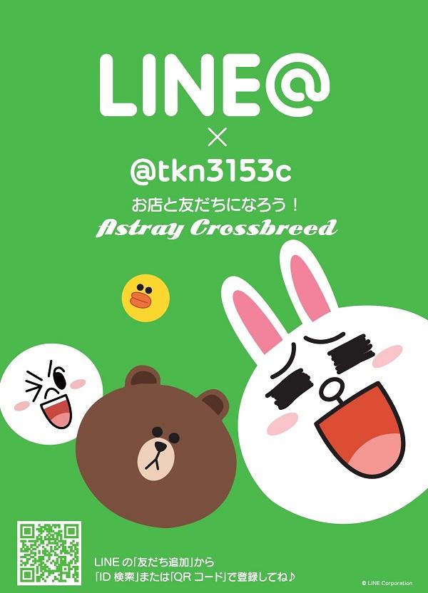 LINEpopブログ用