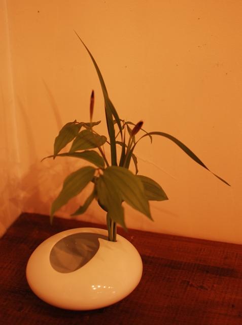 20110609石の蔵ギャラリー3015