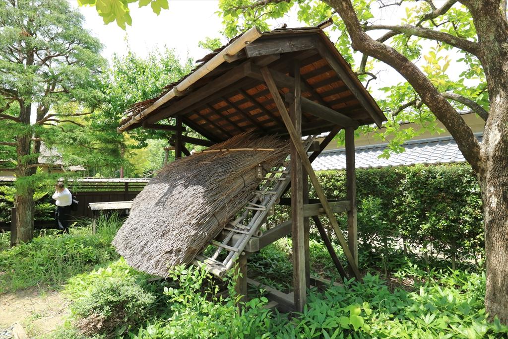 庭には家屋のカットモデルが_2