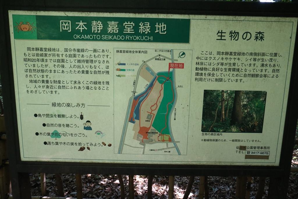 生物の森は通常は立入禁止のようだ