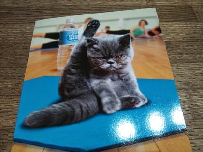 娘がくれたカード