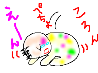 snap_bajiko_201531163439.jpg