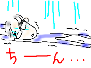 snap_bajiko_20155323729.jpg