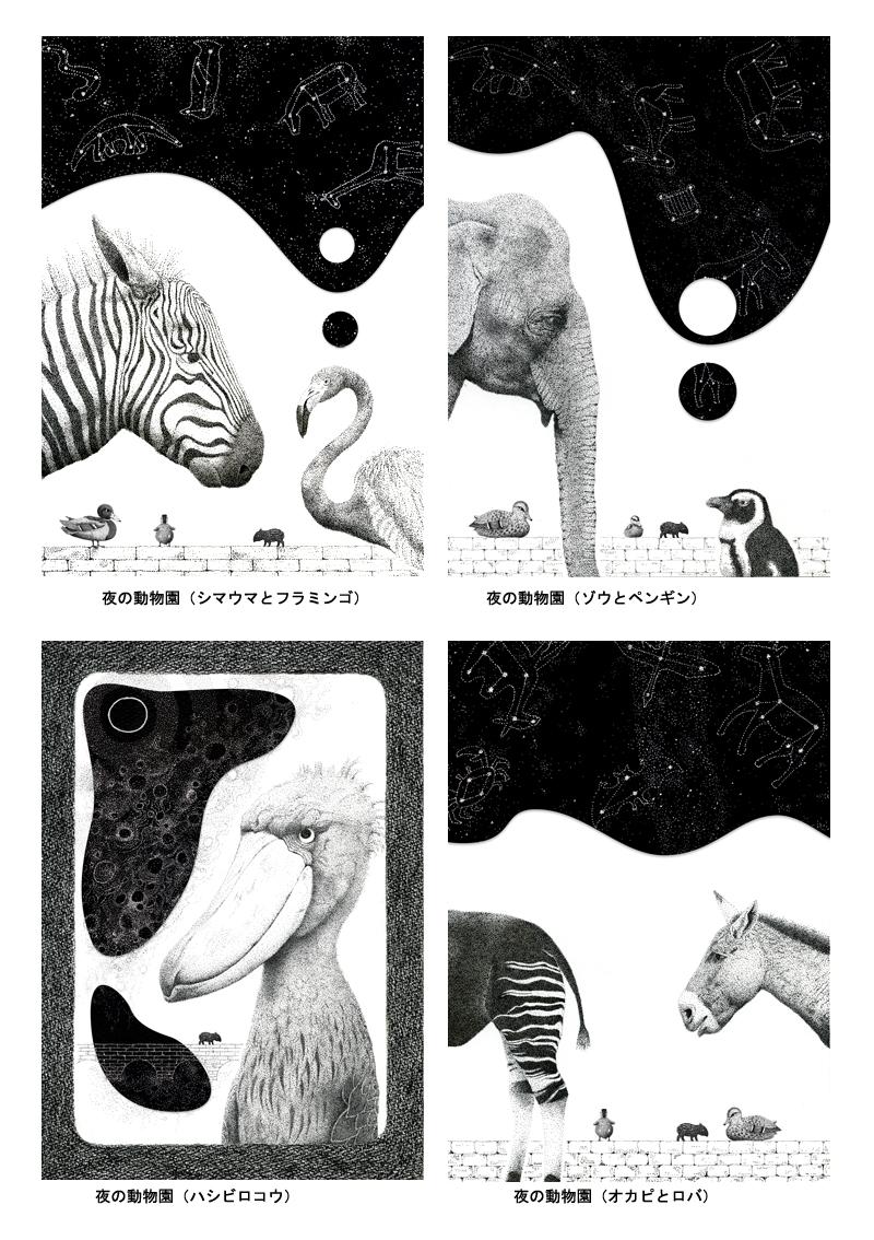 夜の動物園1(800x1000)