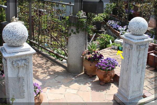 玄関 寄せ植え 門柱