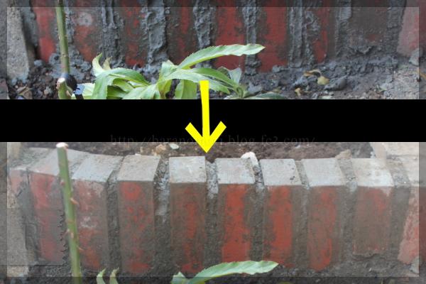 庭づくり DIY 階段下 20150210