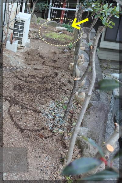 裏庭 土壌改良 粘土質の土を団粒化 20150127