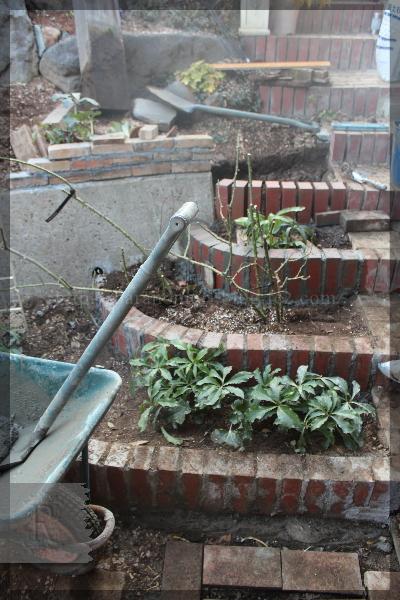 庭づくり DIY 階段下 花壇 20150208