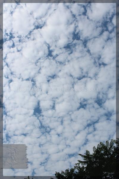 空 SKY スカイ 20150525