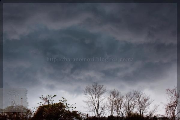 空 SKY 曇り空 20150415
